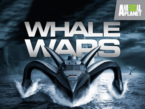 Boat Whaling (Surrounded by Spies)