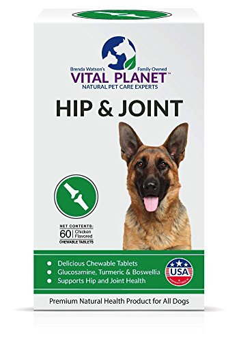 Vital Planet - Natural Hip and Joint Supplement for Dogs - Potent Herbal Blend with Green Lipped Mussel, MSM and Glucosamine - 60 Chewable (Potent Blend)