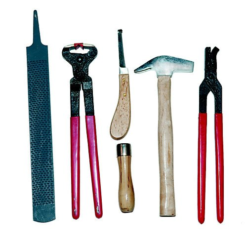 JT International 6 Piece Farrier Shoeing Kit by JT International