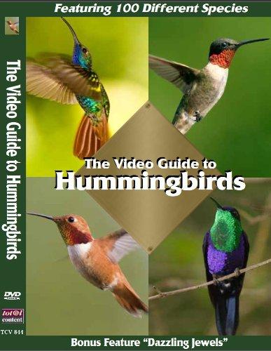 The Video Guide to Hummingbirds: Featuring 100 different hummingbirds. Bonus Program: Dazzling Jewels. Filmed in: Panama, Costa Rica, Columbia, Venezuela, Ecuador, Peru and Brazil (Panama-shops)