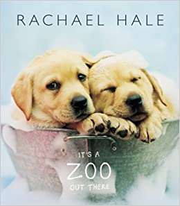 Image result for it's a zoo out there rachael hale