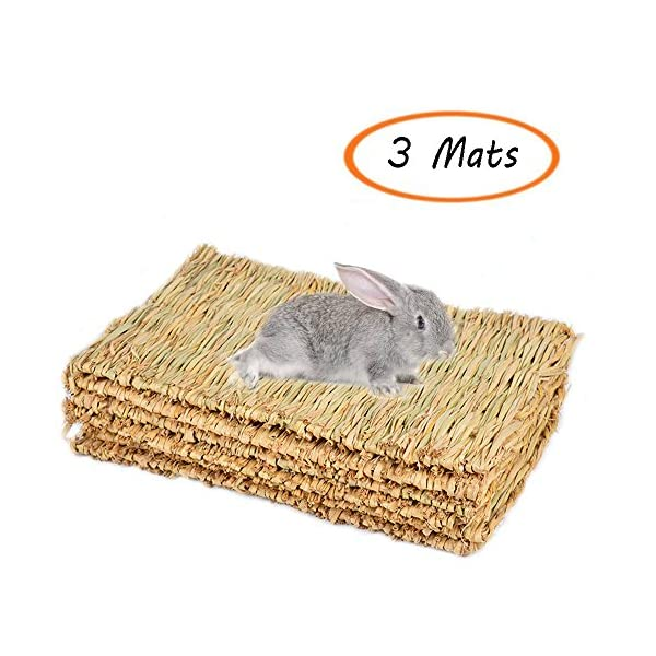 Grass Mat Woven Bed Mat for Small Animal Bunny Bedding Nest Chew Toy Bed Play Toy for Guinea Pig Parrot Rabbit Bunny Hamster Rat(Pack of 3) (3 Grass mats) 1