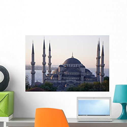 Wallmonkeys Main Mosque Istanbul Sultan Wall Mural Peel and Stick Graphic (24 in W x 16 in H) WM125838