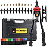 "Giantisan 17"" Rivet Nut Tool, Professional Rivet Nut Tool Setter Kit Including 11 Metric and SAE Mandrels, 110Pcs Assorted Rivet Nuts, Effortless Design, Rugged Carrying Case"