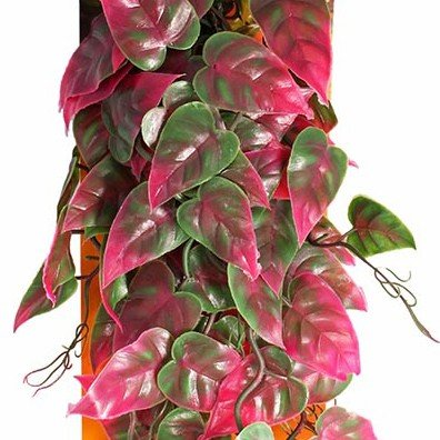 - Penn Plax Reptology Climber Vine Reptile Terrarium Plant Decor Red & Green 24inch