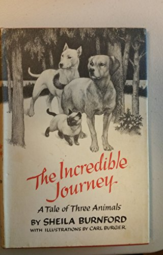 The Incredible Journey A Tale Of Three Animals
