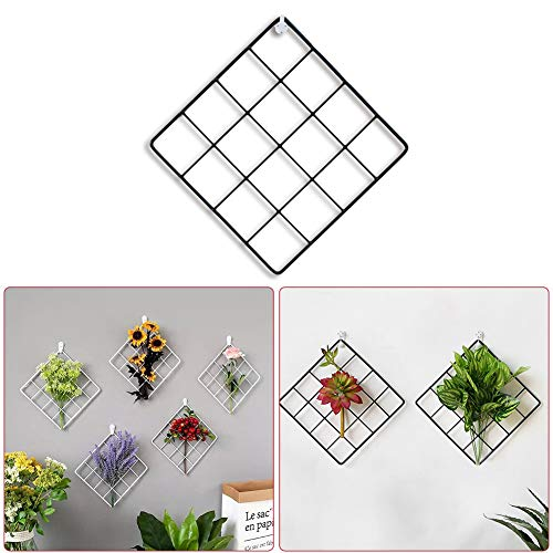 PROKTH Metal Mesh Wall Decor Grid Panel Display Stands, Photo Wall Multifunction Wire Wall Mesh Decorative Iron Rack Clip Photograph Wall Hanging Picture wall Fashion Art Display Organizer Black