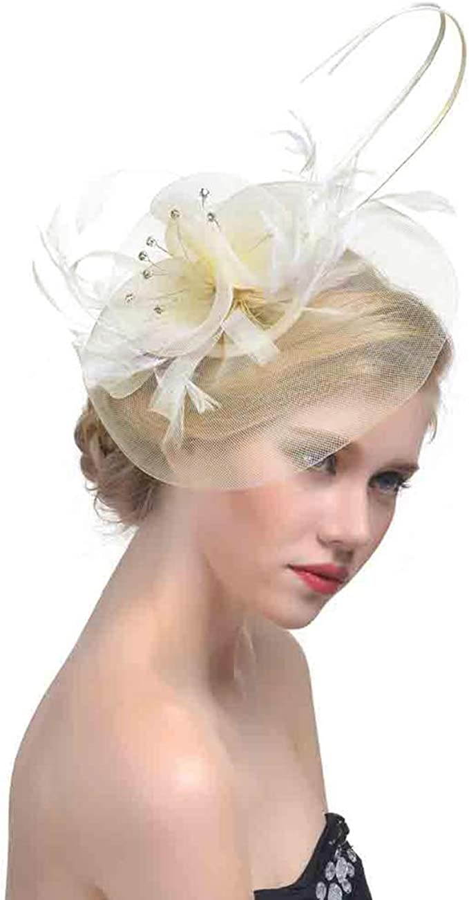 Feather Fascinator Stirnband Netz Blume Haarclip Haarreif Haarschmuck