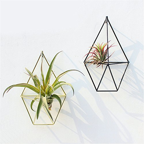 2Pcs Hanging Geometric Air Plants Holder Hollow Flower Pots Metal Tillandsia Plants Rack Wall Decor Container for Succulent Plants, Mini Cactus, Faux Plants by Feileng
