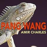 Pang Wang (Original Mix)