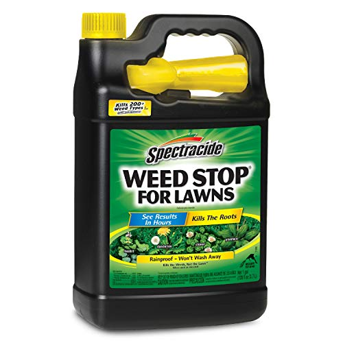 Spectracide Weed Stop For Lawns, Ready-to-Use, 1-Gallon, 4-Pack (Best Weed Stop For Lawns)