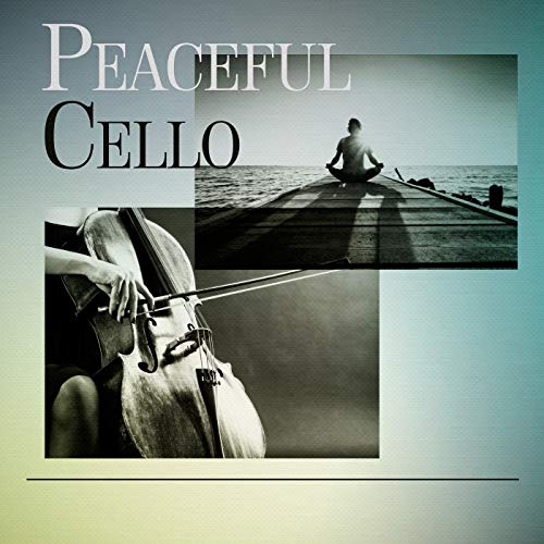 Cello Concerto in C Major RV 400: II. Largo