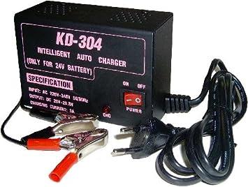 Cablematic - Cargador Batería 24V (3A): Amazon.es: Electrónica