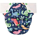 HappyEndings Toddler/Kid Pull On Reusable Cloth Diapers/Training Pants (Medium, (Fits 35-50lbs), Dinosaurs, Rawrr!!): more info