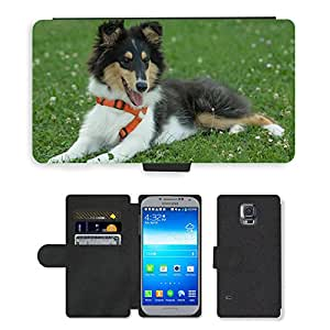 PU LEATHER case coque housse smartphone Flip bag Cover protection // M00117267 Cachorro de perro collie lindo pequeño // Samsung Galaxy S5 S V SV i9600 (Not Fits S5 ACTIVE)