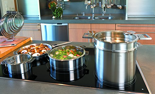 Cristel M24QLKSA Stockpot with Domed Glass Lid, Silver, 10 quart