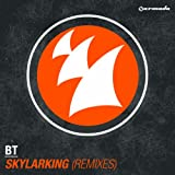 Skylarking (Ilan Bluestone Remix)