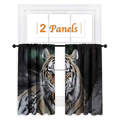 (African Blackout Draperies for Bedroom Tiger Face with Roaring Wildlife Safari Savannah Animal Nature Zoo Photo Print Thermal Insulating Blackout Curtain W72 x L72 Multicolor )