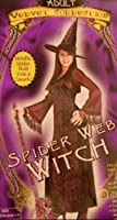 Spider Web Witch Costume