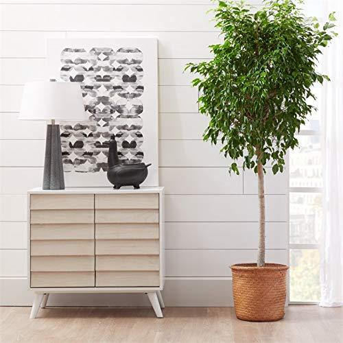 Amazon.com: PRI Home Fare Duotone - Baúl de dos puertas ...