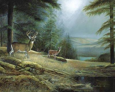 2 Deer Buck Art Prints Western Themed Hunting Posters