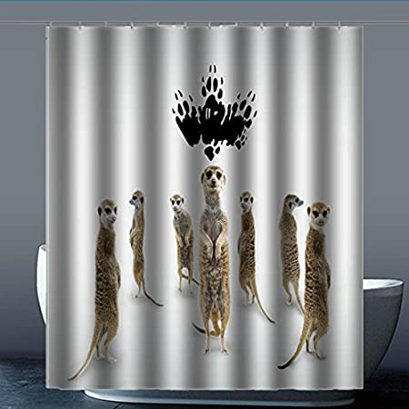 Angel Wink Brauch Meerkat Meerkats 1 Shower Curtain Waterproof Shower Curtain Polyester Fabric 152 Cm X 183 Cm Polyester B 60 X 72 Inches Amazon Co Uk Kitchen Home