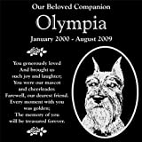 Personalized Schnauzer Dog Pet Memorial 12''x12'' Engraved Black Granite Grave Marker Head Stone Plaque OLY1