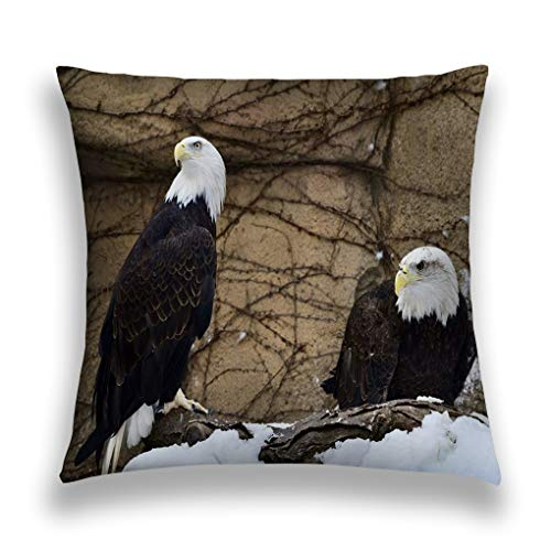 lsudfkj Throw Pillow Cover Pillowcase Winter Picture Two Bald Eagles Perched Snow Covered Branch Exhibit Lincoln Park Zoo Located Simple Sofa Home Decorative Cushion Case 18