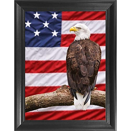 The 3D Art Company-Framed American Eagle- Unbelievable Life Like 3D Art Pictures, Lenticular Posters, Cool Art Deco, Unique Wall Art Decor, With Dozens to Choose From!
