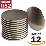 """Neodymium N52 Super Strong Magnets – Set of 12 Permanent Rare Earth Magnets – 1.26""""Dx0.06"""" Round Magnetic Discs – Ideal as Craft Magnets, Education or Science Experiment Magnets or DIY Project Magnets"""