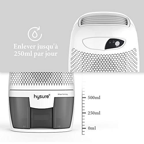 hysure 500ml d shumidificateur retire 250ml jour. Black Bedroom Furniture Sets. Home Design Ideas