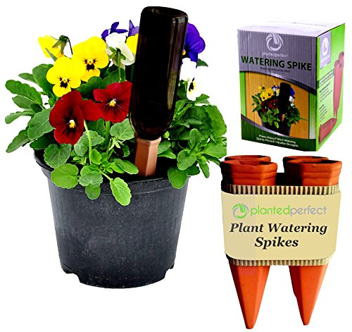 planter perfect vacation watering automatic self water plant spikes water house plants and. Black Bedroom Furniture Sets. Home Design Ideas