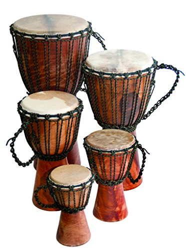 Djembe Beginner Plain, 24'' tall, 9-10.5'' head by Terre