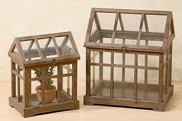 Mini Gewachshaus Holz Gross Amazon De Garten