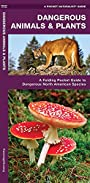 Dangerous Animals & Plants: A Folding Pocket Guide to Dangerous North American Species (A Pocket Naturalist Guide)