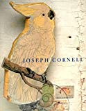 img - for Joseph Cornell book / textbook / text book