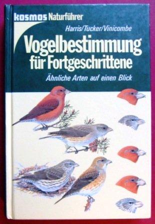 Vogelbestimmung für Fortgeschrittene