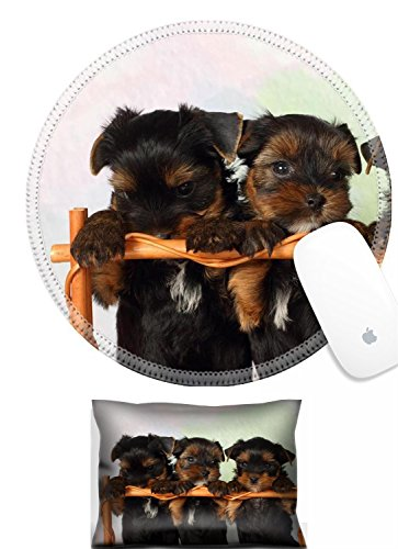 Luxlady Mouse Wrist Rest and Round Mousepad Set, 2pc IMAGE: 37370265 Three puppies Yorkshire terrier in a basket
