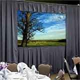 Da-Lite College Office Velour Fast-Fold Drapery Presentation Kits Deluxe Frames With Skirt Bar 83'' x 144'' Area 11'8''