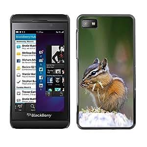 YOYO Slim PC / Aluminium Case Cover Armor Shell Portection //Cute Chipmunk Squirrel //Blackberry Z10