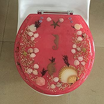 Amazon Com Deluxe Plastic Toilet Seat With Metal Hinges