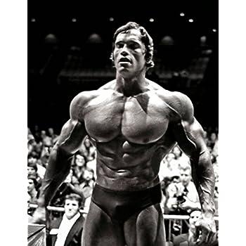 Arnold Schwarzenegger Poster 32 Inch X 24 17 13