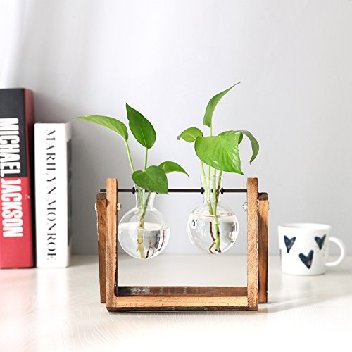 Clear Glass Planter Bulb Vases with Rustic Wood & Metal Swivel Holder Stand, Decorative Plant Terrarium by MyGift (Image #2)