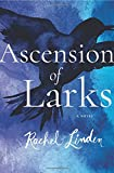 Ascension of Larks
