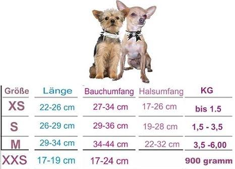 XXS Niki gris invierno ropa para perros Perros Sudadera Chihuahua Yorkie y Co mano: Amazon.es: Productos para mascotas