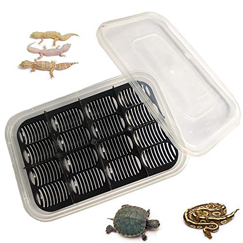 PIVBY Reptile Breeding Box Turtle Egg Incubator Tray Incubator Hatching Container for Hatching Snake Gecko,Lizards, Lions Mane, Reptiles
