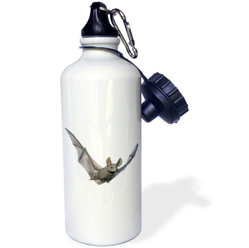 3D Rose wb/_239803/_2 Flip Straw Water Bottle 21 oz
