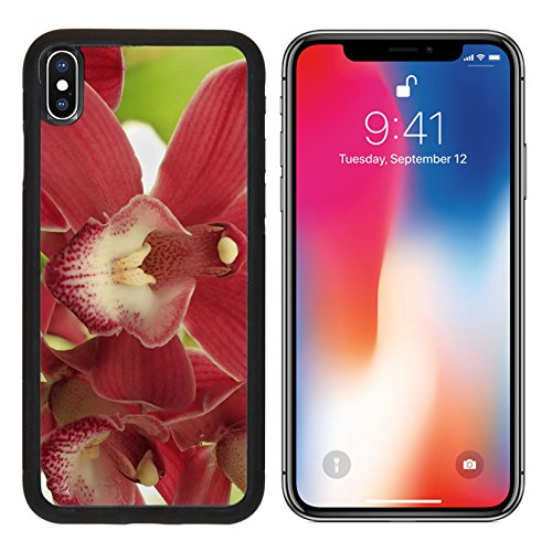 MSD Premium Apple iPhone X Aluminum Backplate Bumper Snap Case Flowers IMAGE 22089888