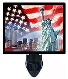 Night Light - Patriotic New York - Twin Towers - USA
