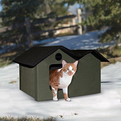 keep outdoor cats away